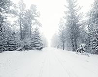 Winter - Redshift study