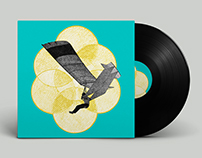 dsr vinyl release