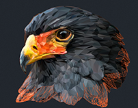 AVES Lowpoly Illustration Series