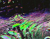 Mush Mush VR