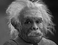 Albert Einstein Chimp - BMW Genuine Parts Campaign