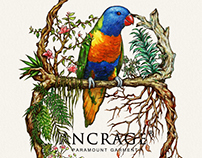四季鸚鵡 Parrot with 4 Seasons