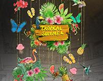 AMLB-Tropical Summer