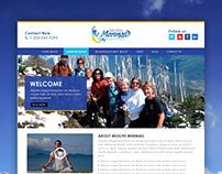 Midlife Mermail Website Design Concept
