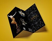 Brochure v1