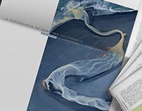 INVEX Banca Privada - Corporate campaign