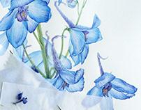 Watercolor delphinium