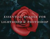 Essential Bundle for PS & LR (1555 items)