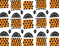 Orange Pineaplle
