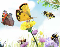 wildlife illustrations edit for Usborne publishing
