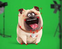 The Secret Life of Pets - 2D Rigging
