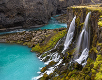 Discover Wild Iceland 131