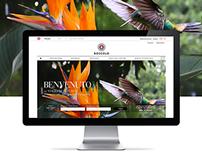 Viaggi di Boscolo | Website