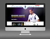 AFFA web site design concept