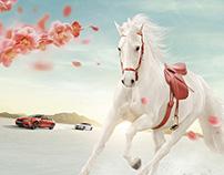 BMW Chinese New Year