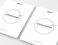 IAG 2013 Annual Report