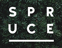 Spruce – Typeface