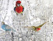 Bird Chandelier II