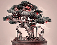 Bonsai | Artwork