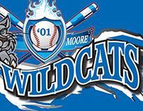 Wildcats Banner