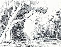 Drawings 20140925
