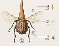 Insect Definer