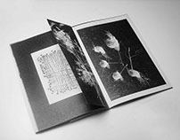 Jewellery booklet | Hara Kourtali