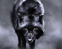 lobo yellowstone