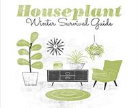 Houseplant Survival Guide Seminar