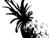 ILLUSTRATIONS: pineapple exploration