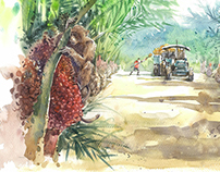 The oil palm tree project01