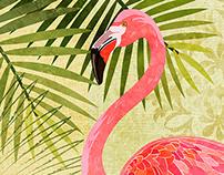 Flamboyant Flamingos