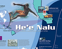 Evolution of Surfing Information Graphic Panels
