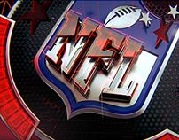 NFL: AROUND THE NFL