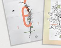 ikebana ; sistema de postales
