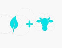 Vakimu | Branding, Packaging & Web Design