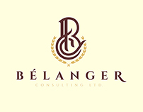 Corporate Identity : Belanger Consulting LTD.
