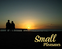 Small Pleasures (2008)