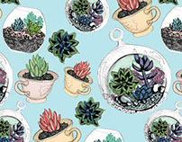 Succulent Patterns