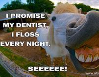 Orthodontics Las Vegas