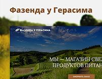 Дизайн сайта «Фазенда у Герасима»