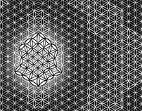 Digitized Sacred Geometry
