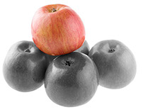Fuji Apples - rough Photoshop attempt