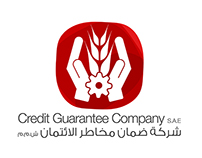 Credit Guarantee Company - Branding Project