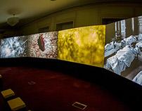 """War Letters"" multiscreen film installation."