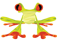 BRANDING | Frog Design
