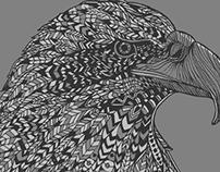 Eagle (Soaring)