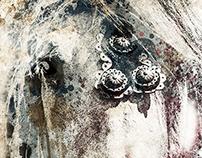 Le cheval de démonstration