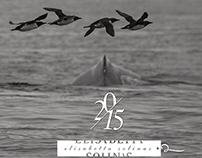 Calendario Mare 2015