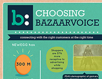 BV Infographic Pitch